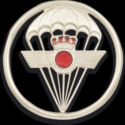 Distintivo Boina Aviacion Paracaidista